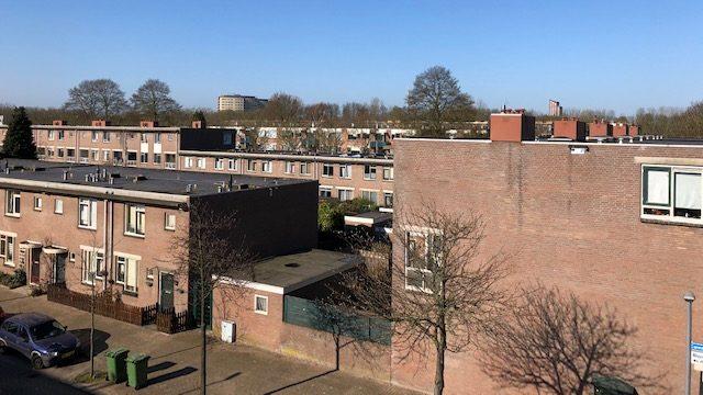 Thor Logical gevelonderzoek Rotterdam